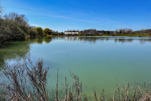 Cyanobactéries sur le plan d'eau